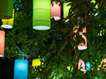Colored lanterns on the trees at night